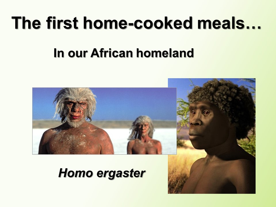 _4 Cook Like a Native